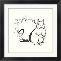 Framed Line Squirrel
