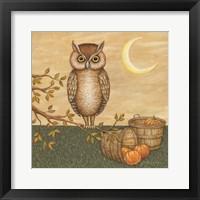 Framed Halloween Owl