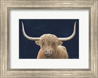 Framed Highland Cow Navy