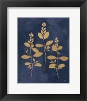 Framed Botanical Study IV Gold Navy