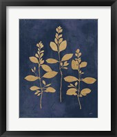 Framed Botanical Study IV Gold Navy