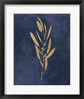 Framed Botanical Study I Gold Navy