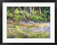 Framed Springtime Woods