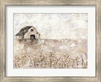 Framed Cotton Farms