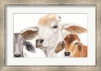 Framed Ranch Life