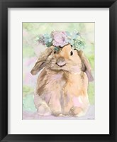 Framed Bunny Bella