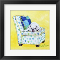 Framed Bulldog on Polka Dots