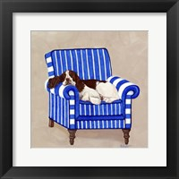 Framed Springer on Blue