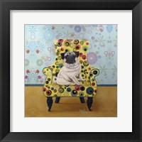 Framed Pug-a-dots