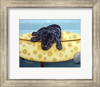 Framed Lab on Yellow