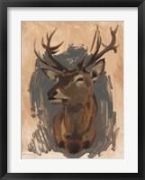Framed Red Deer Stag II
