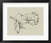 Framed Dog Tired II