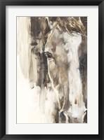 Framed Cropped Equine Study I