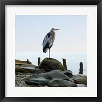 Framed Beachscape Heron I