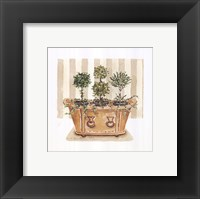 Framed Topiary Tub