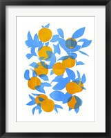 Framed Bright Tangerines I