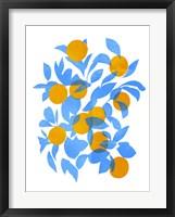 Framed Bright Tangerines II