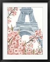 Framed Paris Cherry Blossoms I