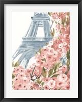 Framed Paris Cherry Blossoms II