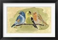 Framed Bird Perch I