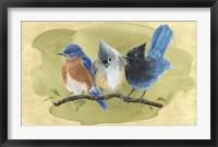 Framed Bird Perch III