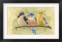 Framed Bird Perch IV