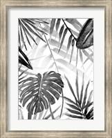 Framed Jungle Walk II