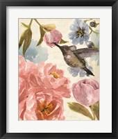 Framed Nectar's Sip II