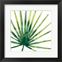 Tropical Jewel I Framed Print