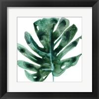 Tropical Jewel II Framed Print