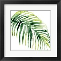 Framed Tropical Jewel V