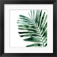 Tropical Jewel VII Framed Print
