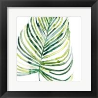 Framed Tropical Jewel IX