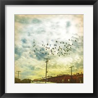 Framed Birds on Wires V