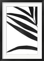 Framed Black Palms VI