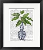 Framed Chinoiserie Vase 1, With Plant Book Print