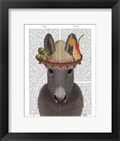 Framed Donkey Sombrero Book Print