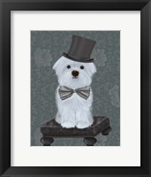 Framed Maltese with Top Hat