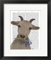 Framed Goat and Bluebells Book Print
