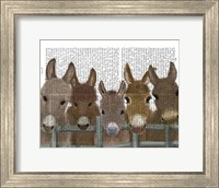 Framed Donkey Herd at Fence Book Print