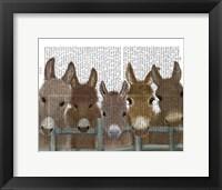 Framed Donkey Herd at Fence Book Print