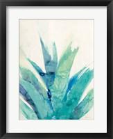 Framed Cool Aloe