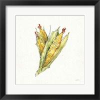 Framed Veggie Market III Corn