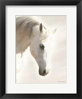 Framed Pegasus I