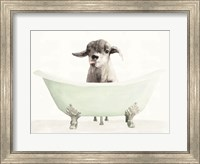 Framed Vintage Tub with Goat