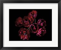 Framed Red Double Tulips