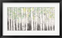 Framed Soft Birches Charcoal