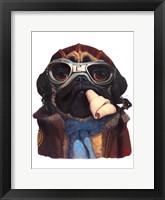 Framed Aviator Pug