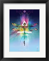Framed Cosmic Dragonfly