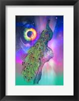 Framed Cosmic Peacock